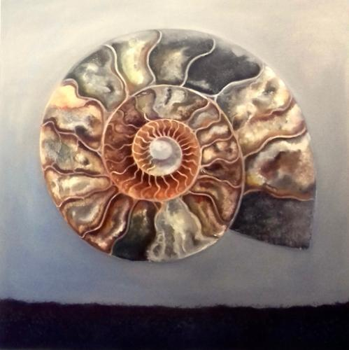 Artwork Ammonite
