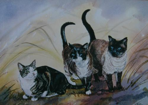 Artwork Pet cats.