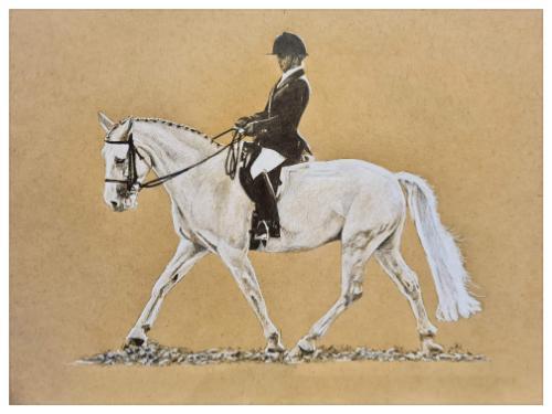 Artwork Horse and rider portrait