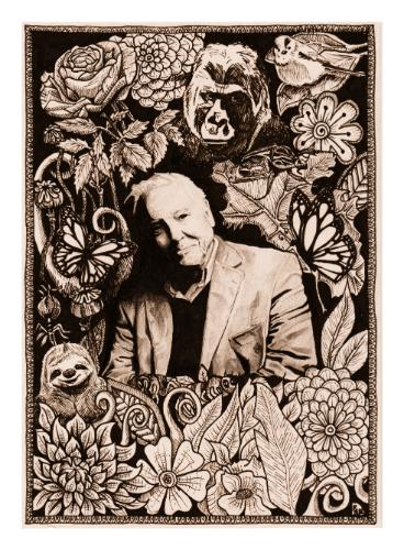 Artwork david Attenborough and all that he loves.