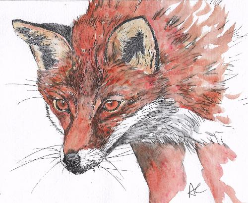 Fox by AmandasArt - Use the 'Create Similar' button to commission an artist to create your own artwork.