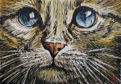 Artwork Cat close up