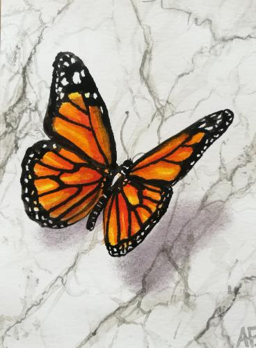 Artwork Butterfly landing on marble
