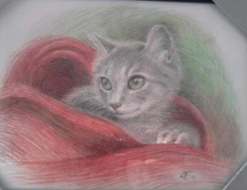 Artwork Stellina