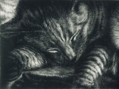 Artwork Sleeping cat