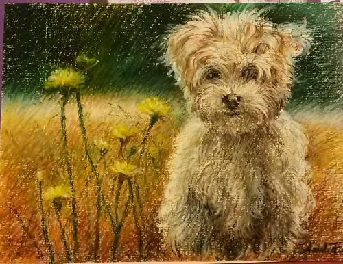 Puppy portrait by Annalisa - Use the 'Create Similar' button to commission an artist to create your own artwork.