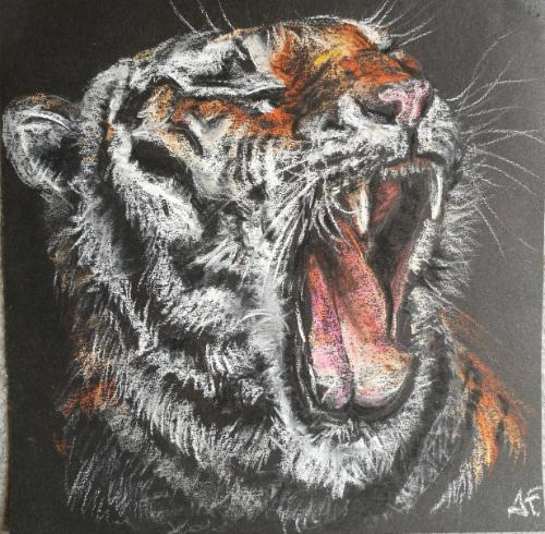 Artwork Tiger