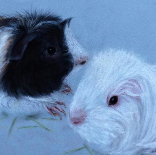 Guinea Pigs by Laine - Use the 'Create Similar' button to commission an artist to create your own artwork.
