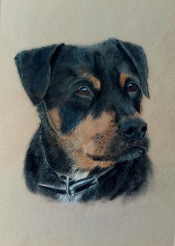 Artwork Bailey