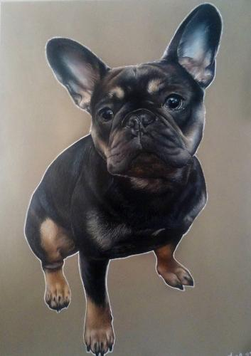 Artwork French Bulldog Portrait