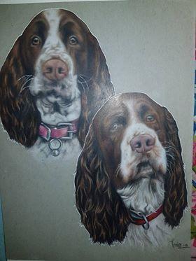 Artwork Two English Springer Spaniel Dogs
