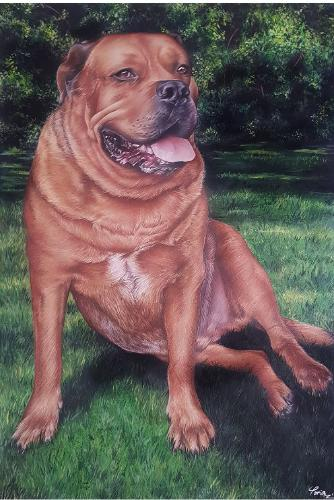 Artwork Portrait of a dog called Jethro